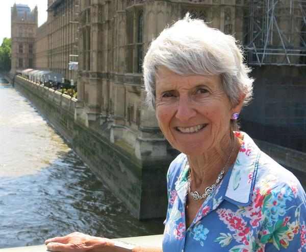Widow tells MPs of financial and social burden of brain tumour diagnosis