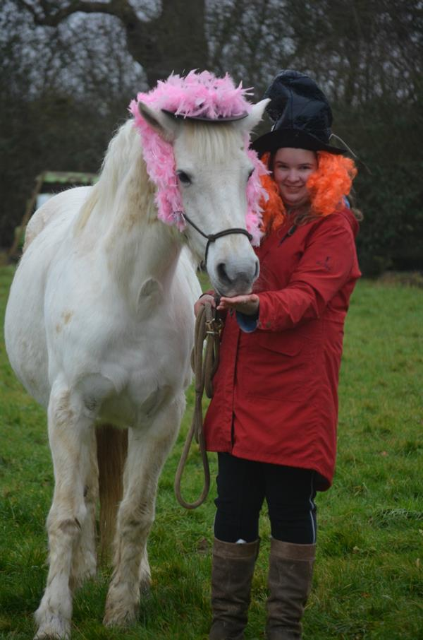 Horses and riders get their Hats on for Brain Tumour Research!