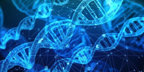What is Genomic Medicine?