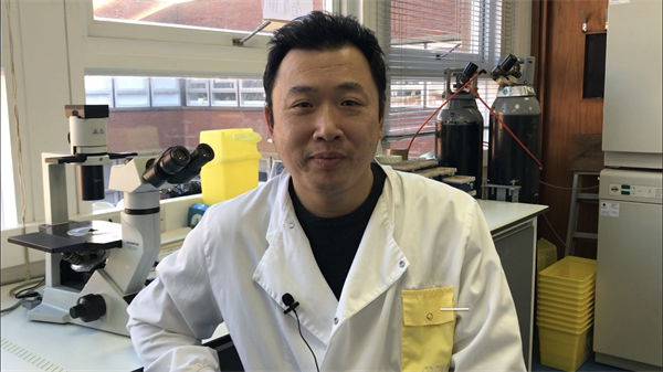 Medical cannabinoids and brain tumours – Interview with Dr Wai Liu