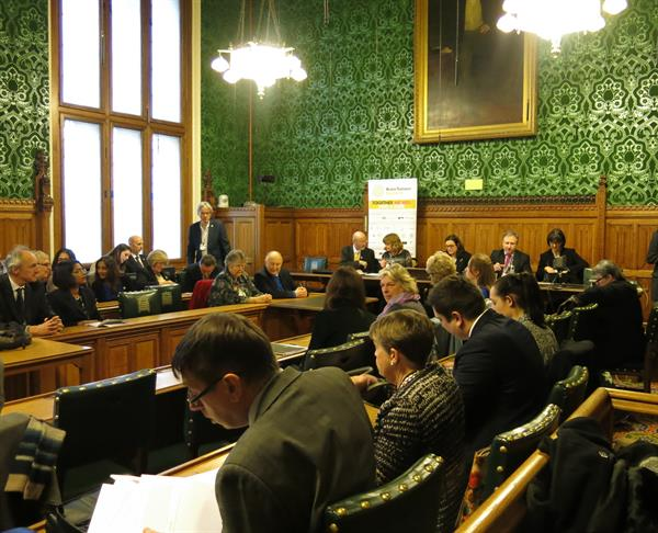 All-Party Parliamentary Group on Brain Tumours - December 2016