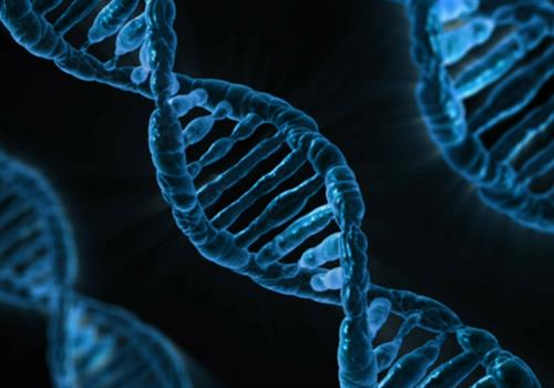 dna_free to use_2