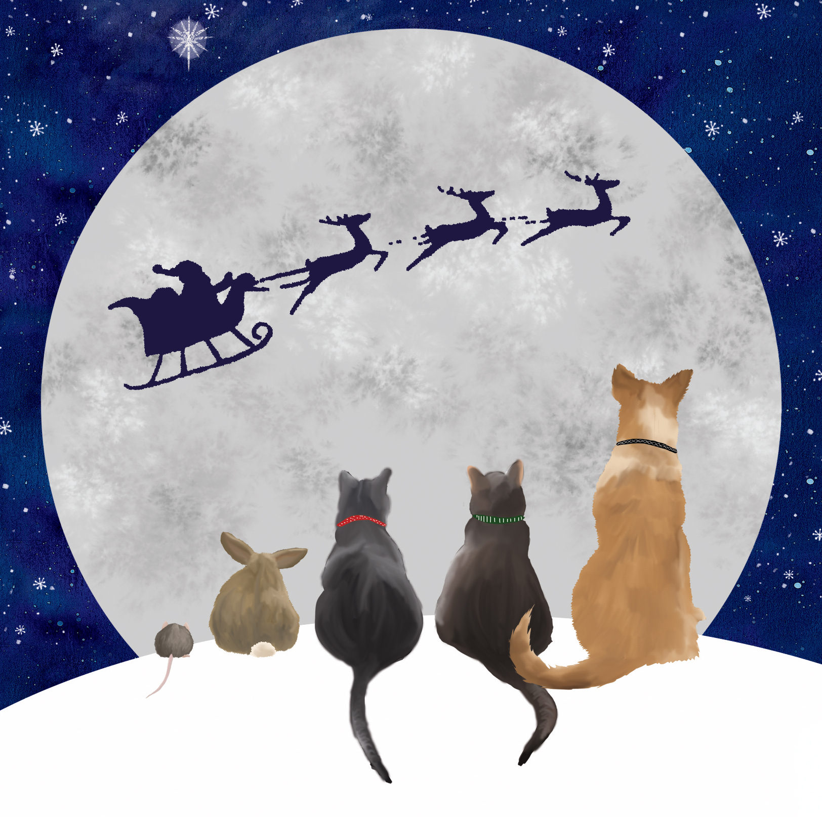 Cats watching santa fly past the moon