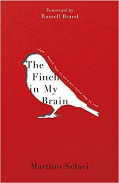The Finch In My Brain Cover