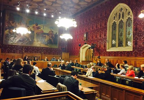 July meeting of the All-Party Parliamentary Group on Brain Tumours