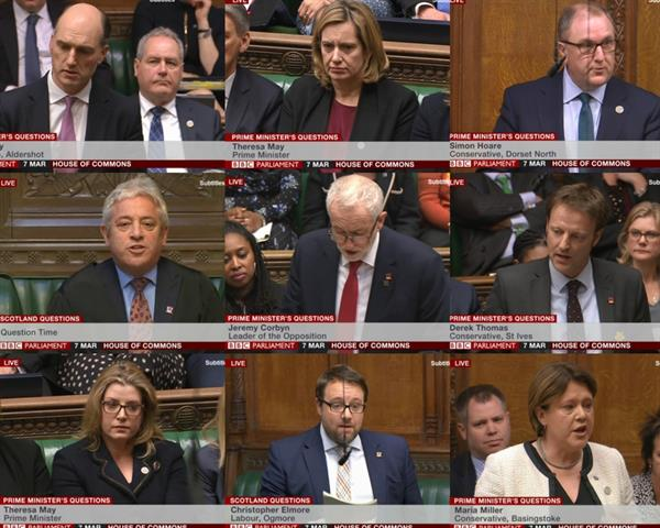 Brain Tumour Research pin badges during PMQs today