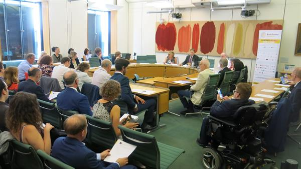 APPG on Brain Tumours meets and reflects on momentous year